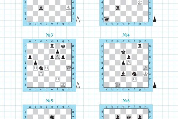 «Шахматные приключения лисёнка Фимки» страница 11