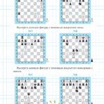 «Шахматные приключения лисёнка Фимки» страница 66