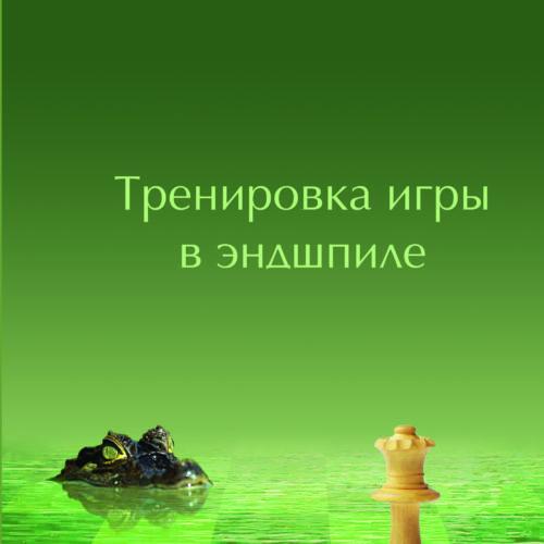 """Фокин С.,Новиков С. """"Тренировка игры в эндшпиле"""""""