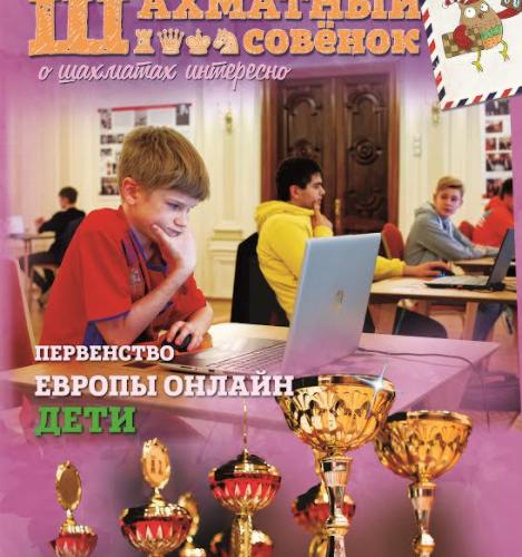 Шахматный Совёнок 18